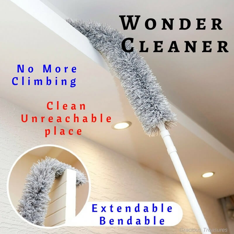CNY Spring Cleaning - Wonder Cleaner with Extendable Arm